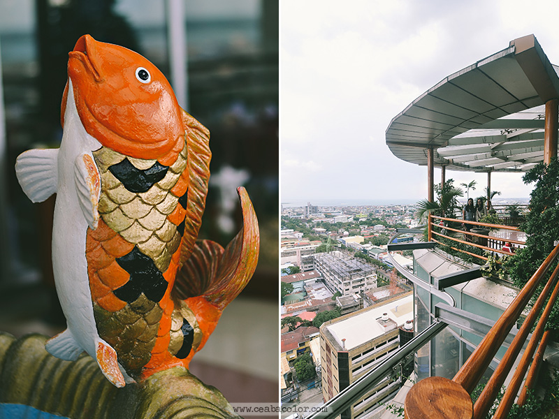 sky-experience-adventure-cebu-ceabacolor-13