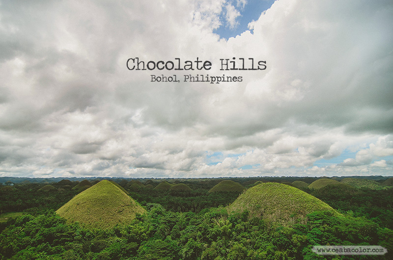 {travel} Chocolate Hills, Bohol