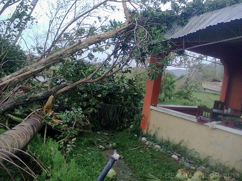 bagyo-yolanda-super-typhoon-haiyan-balasan-iloilo-05