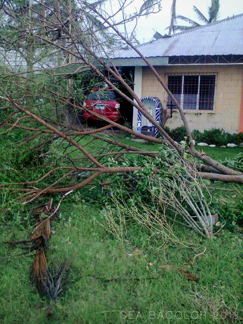 bagyo-yolanda-super-typhoon-haiyan-balasan-iloilo-08