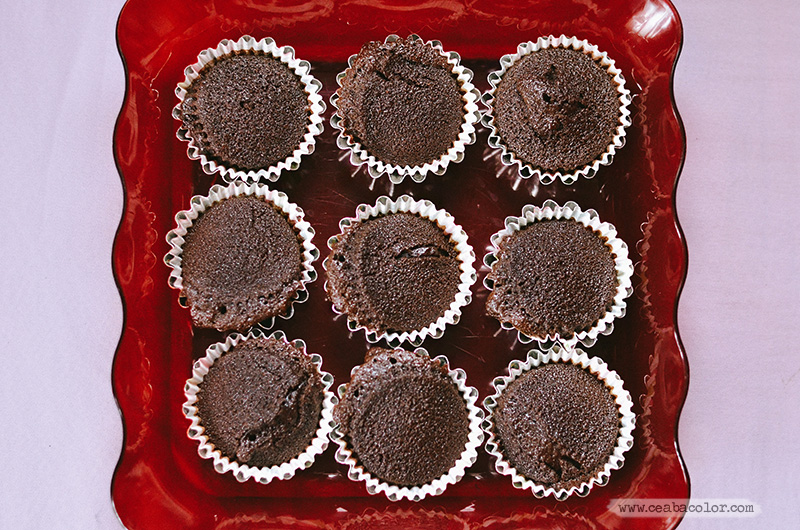 plain-chocolate-cupcake-1-cea