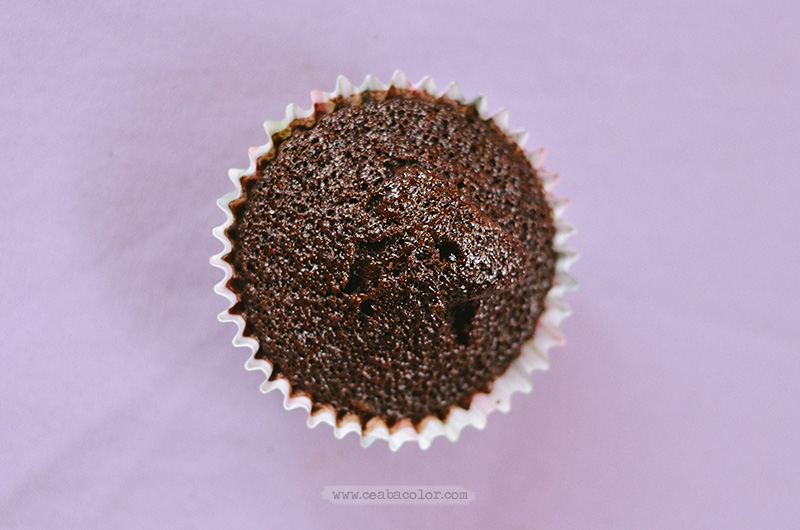 plain-chocolate-cupcake-2-cea