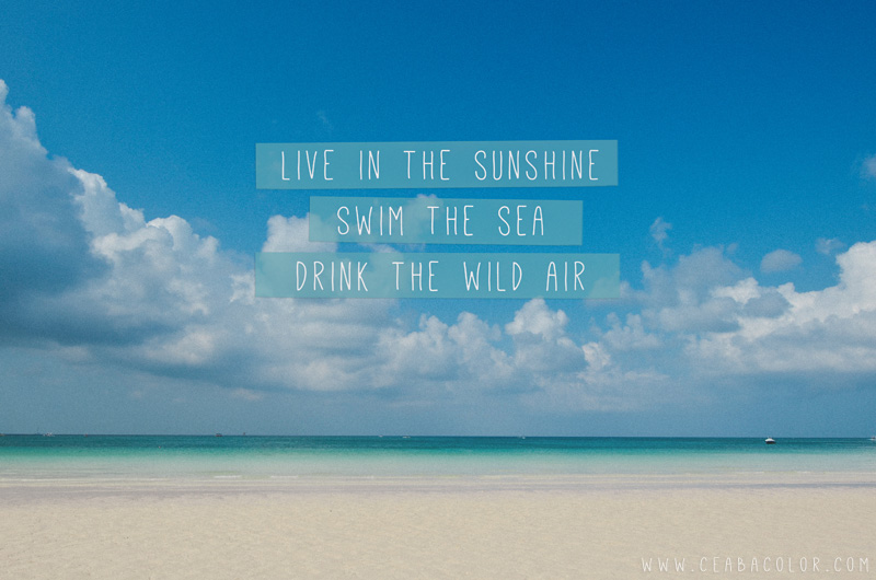 Beau Live In The Sunshine Swim The Sea Drink The Wild Air