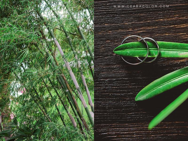 asya premier boracay beach wedding bamboo green ring shot