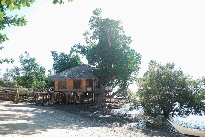 marbuena-island-ajuy-iloilo-beach-by-ceabacolor-11