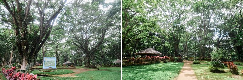 malagos-garden-park-davao-1-by-cea