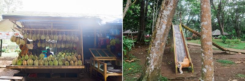 malagos-garden-park-davao-4-by-cea
